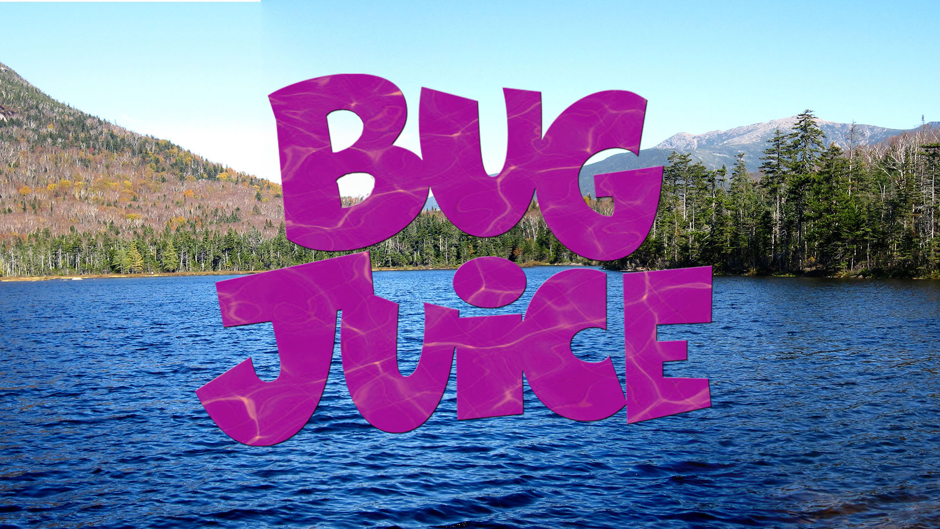 a cast photo from Bug Juice